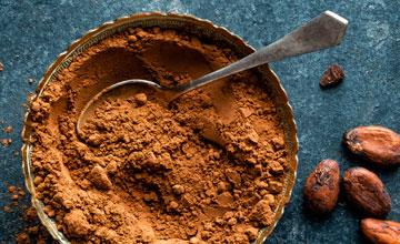 Cocoa Powder Gillco