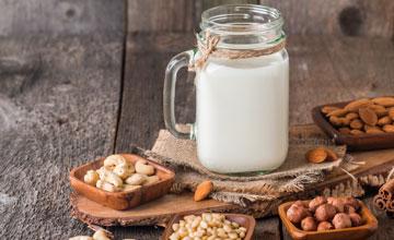 Gums Systems Nut Milk Gillco