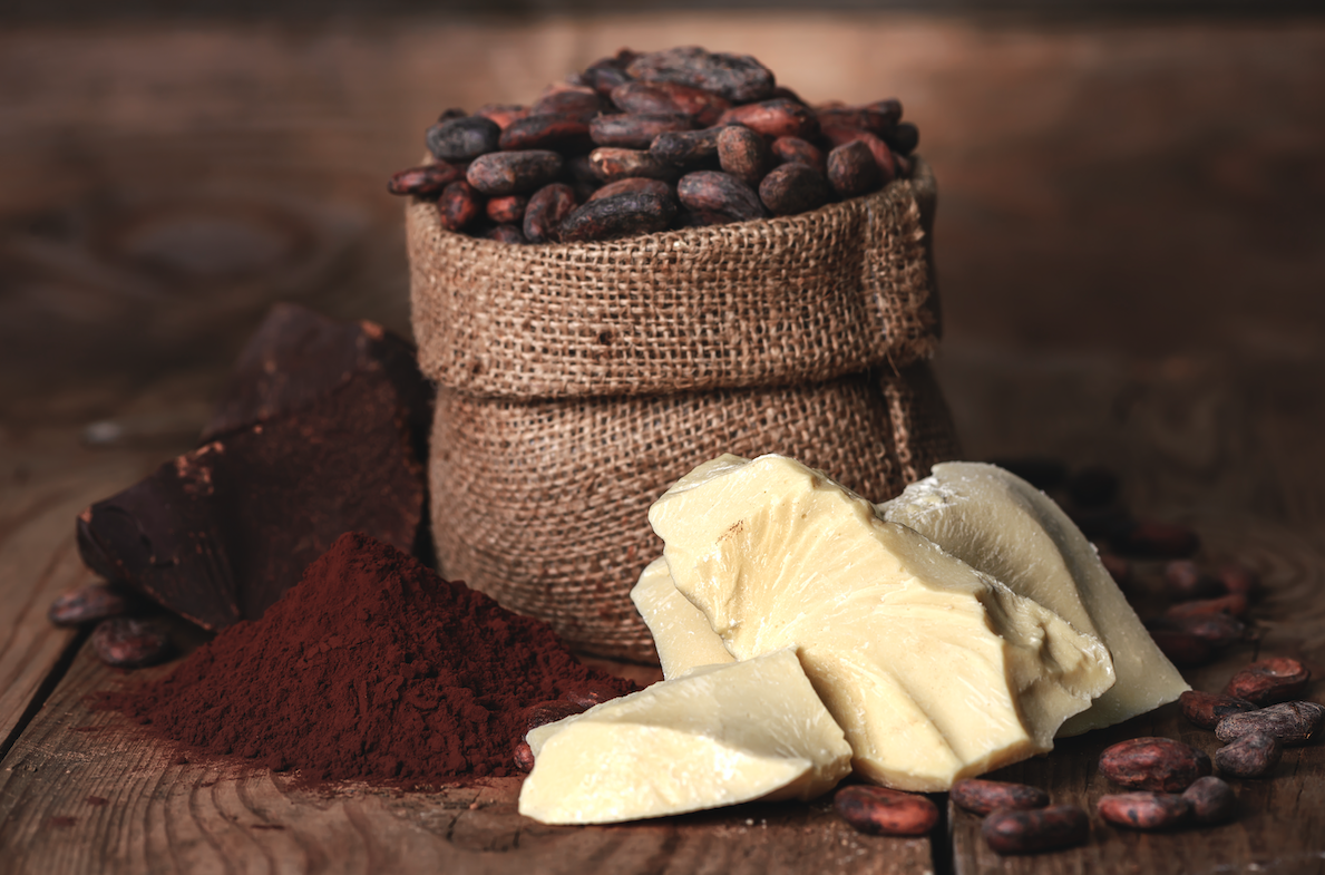 cocoa buttter and cocoa beans and cocoa powder